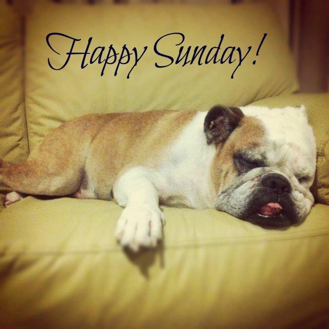 happy-sunday-pug-dog-graphic